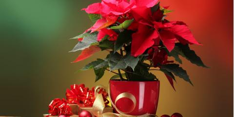 Why a Bouquet Makes the Perfect Holiday Gift, High Point, North Carolina