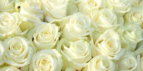 The history symbolism behind white roses grace flower shop inc the history amp symbolism behind white roses high point north carolina mightylinksfo