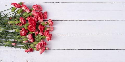 4 Fun Facts About Carnations, High Point, North Carolina