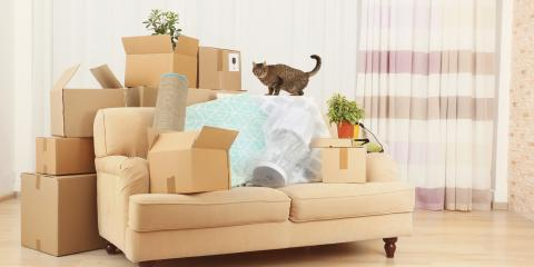 5 Furniture & Item Packaging Issues That Require Professional Services, High Point, North Carolina