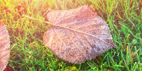 Aeration Tips for Fall From Hilliard's Lawn Service Experts, Columbus, Ohio