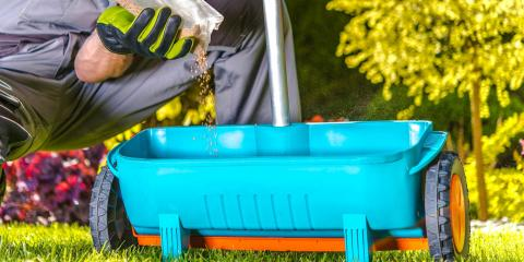 3 Reasons to Fertilize Your Lawn, Hilo, Hawaii