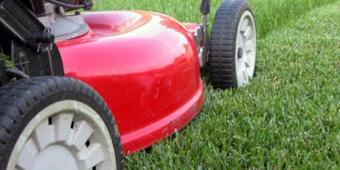 3 Common Signs You Need Lawn Mower Repairs   Garden Exchange   Hilo |  NearSay