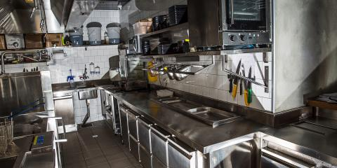 3 Ways Roaches Negatively Affect Your Restaurant, Hilo, Hawaii