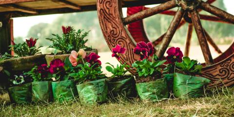 Attractive Local Florist Shares 5 Tips For Preparing Your Spring Garden   Justice Flower  Shop   Parma   NearSay