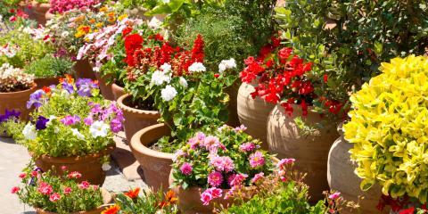 3 Tips for Starting a Container Garden, Texarkana, Texas