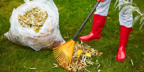 3 Landscaping Duties for Your HOA Management Team This Fall, Longwood, Florida
