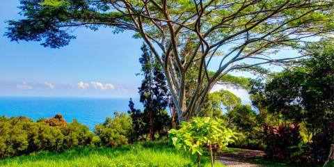 3 Natural Highlights on the Road to Hana, Kahului, Hawaii