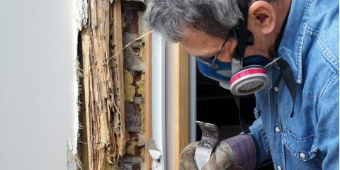 4 Common Termite Questions to Help You Protect Your House, North Hobbs, New Mexico