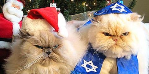 Merry Christmas & Happy Chanukah, Colchester, Connecticut