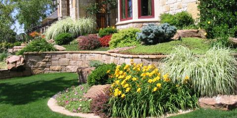 New Trees and Shrubs for your Landscape, Plymouth, Minnesota