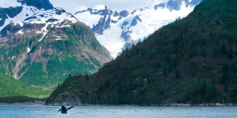 What Time of Year Is Best for Sightseeing in Alaska?, Homer, Alaska
