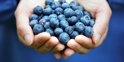 Why Blueberries Make the Best Smoothies: 3 Health Benefits of This Miracle Fruit, Honolulu, Hawaii