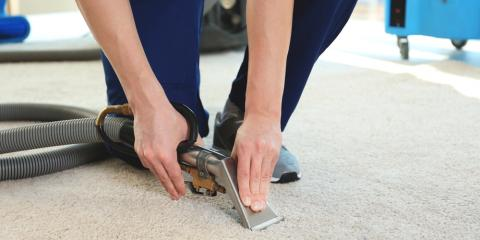 What Can I Expect From a Carpet Cleaning Professional?, Honolulu, Hawaii