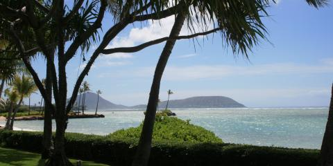 What Is OB/GYN Care? Honolulu's University Women's Health Specialists Explains, Honolulu, Hawaii
