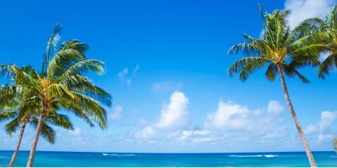 Honolulu's Pancake Experts Share 3 Things to Remember if You Miss Hawaii, Honolulu, Hawaii