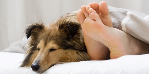 Oahu's Best Wellness Center Teaches You How to Create the Perfect Sleep Environment, Honolulu, Hawaii