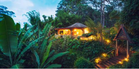 3 Native Hawaiian Plants to Revamp Your Landscaping, Honolulu, Hawaii