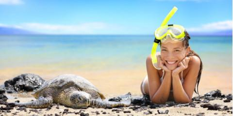 Green Sea Turtle 101: What They Are & How Snorkeling Can Help You Get a Closer Look, Honolulu, Hawaii