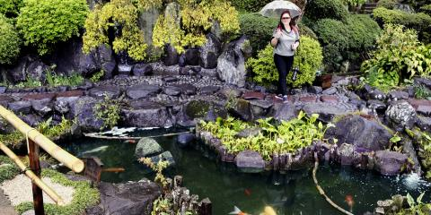 How to Care for Your Garden Pond Water Feature, Koolaupoko, Hawaii