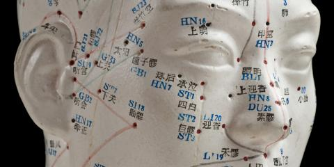 Understanding Acupuncture: What Are the 12 Regular Meridians?, Honolulu, Hawaii