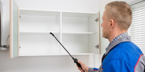 3 Signs You Should Hire a Pest Management Professional, Honolulu, Hawaii