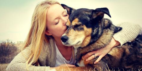 How a Will or Trust Allows You to Take Care of Your Pets, Honolulu, Hawaii