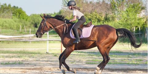 Why Every Child Should Have Horseback Riding Lessons, Broadbay, North Carolina