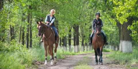 3 Health Benefits of Horseback Riding - Legacy Saddlebreds
