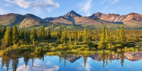 3 Reasons to Visit Denali National Park , Healy, Alaska