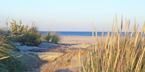 What to Know Before You Buy a House in Cape May, Toms River, New Jersey