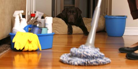 Supreme Team Cleaning, Cleaning Services, Services, Springfield, Virginia