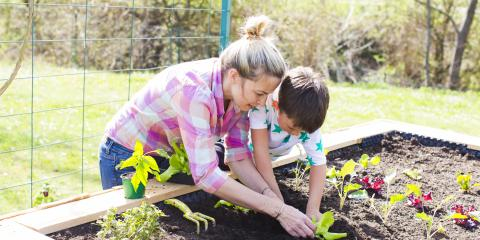 5 Tips for Keeping Your Food Garden Healthy, Long Valley, New Jersey