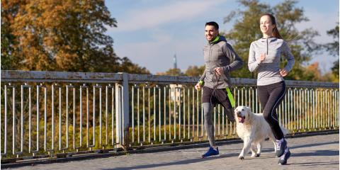 Dog Day Care Offers 5 Ways to Work Out With Your Pet, Newport-Fort Thomas, Kentucky