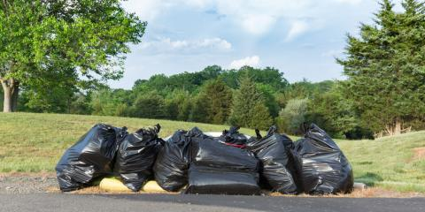 3 Benefits of Professional Yard Waste Removal, Lake Katrine, New York