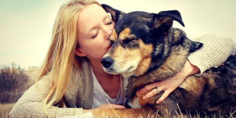 3 Ways to Keep Your Pet's Memory Alive, Atlanta, Georgia