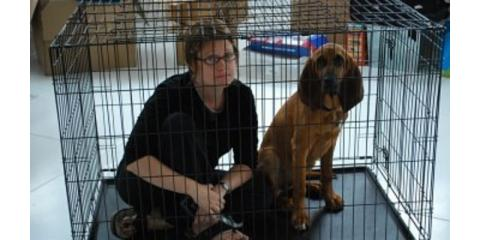 How to Train Your Human (for dogs)- Crates: Jail Cell or Cozy Home?, Middletown, Ohio