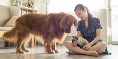 3 Ways to Protect Your HVAC System From Pets, Troy, Missouri