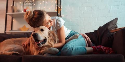 4 HVAC Tips for Pet Owners, Turner, Oregon