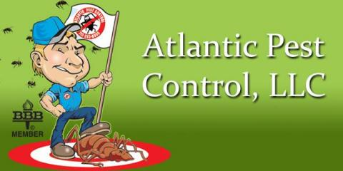 Atlantic Pest Control Lists Top 4 Signs of Termites, Atlantic, Iowa