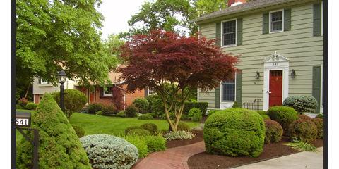 Working on Your Landscape Design? Try These 3 Tree Planting Tips, Hamilton, Ohio