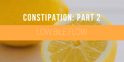 Your Complete Guide to Causes of Constipation and Finding Relief – Part 2: Low Bile Flow, Manhattan, New York