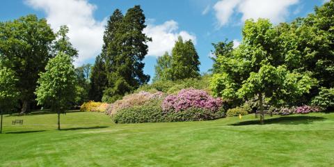 Hamilton's Finest Nursery Shares 5 Tips for a Healthy Spring Lawn, Hanover, Ohio