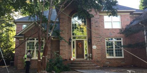 3 Tips for Growing Strong Trees, Greensboro, North Carolina