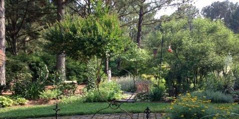Why Gardens Are Ideal for Stress Relief, Greensboro, North Carolina