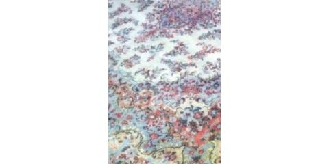 ORIENTAL RUG Cleaning SPECIAL  ( $ 89.00 VALUE ), Penfield, New York