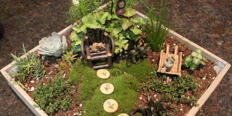 Learn About the Whimsical World of Fairy Gardens, Quaker City, Ohio