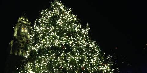 3 x tree = Boston, Boston, Massachusetts