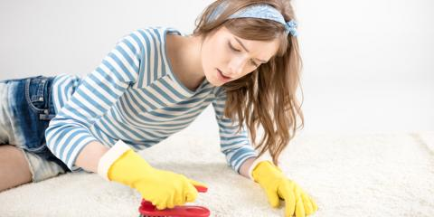 5 Simple Steps to Remove the Smell of Pet Urine From Your Carpet, Southeast Guadalupe, Texas