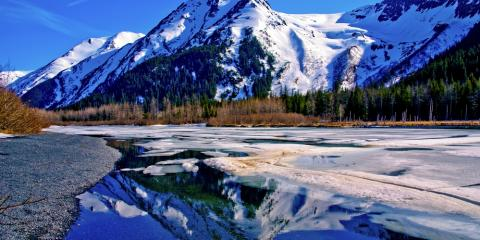 4 Reasons to Take a Fishing Trip in Alaska During Fishing Season, Juneau, Alaska